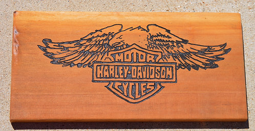 Harley Motorcycle/ Eagle