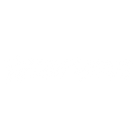 logo_birds.png