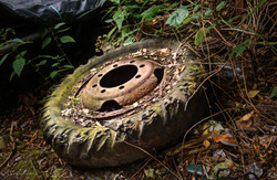 Bunker Klärwerk Krefeld I Lost Place I Urbex Art I Samara Blue Photo Art I Krefeld