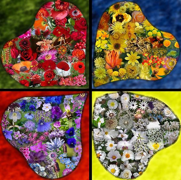 2012-Fresque Fleurs-Compo Petite.jpg