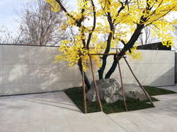 Bateig Galaxy Beijing_1