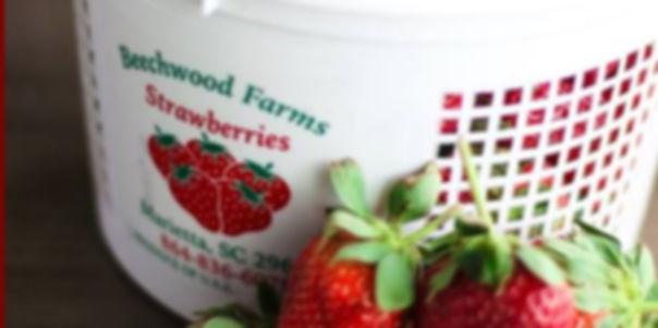 BEECHWOOD FARMS_01.JPG
