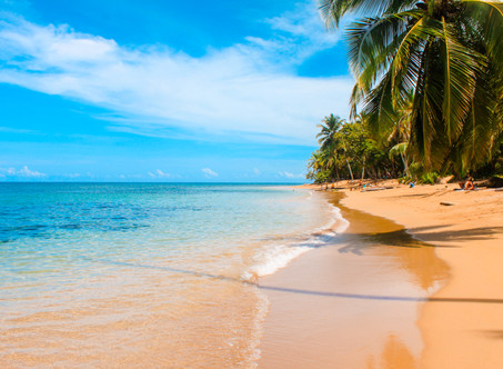 7 Things to do in Puerto Viejo