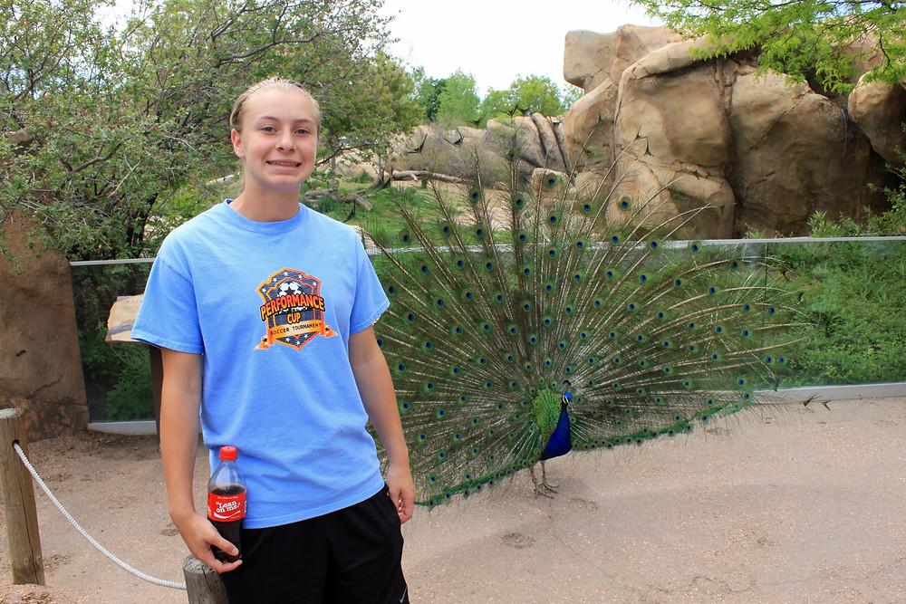 Escape Reno: Denver Zoo