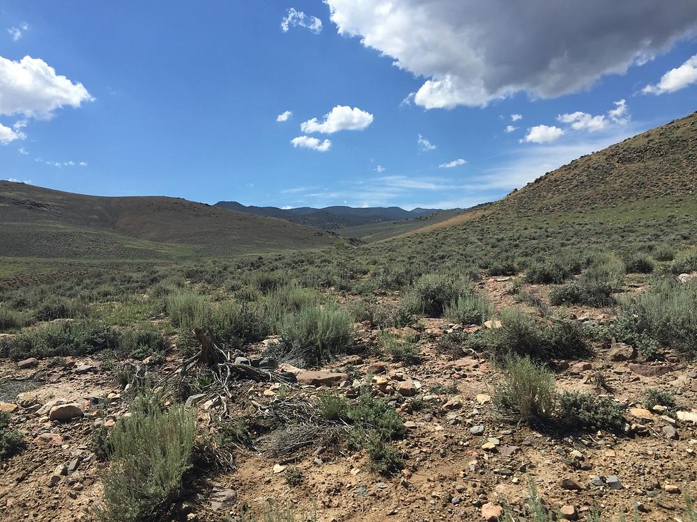 Escape Reno: Bridgeport