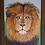 """Thumbnail: Lion Framed 14"""" x 18"""""""