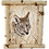 "Thumbnail: GREY WOLF BIRCH WOOD FRAME 11"" x 14"""