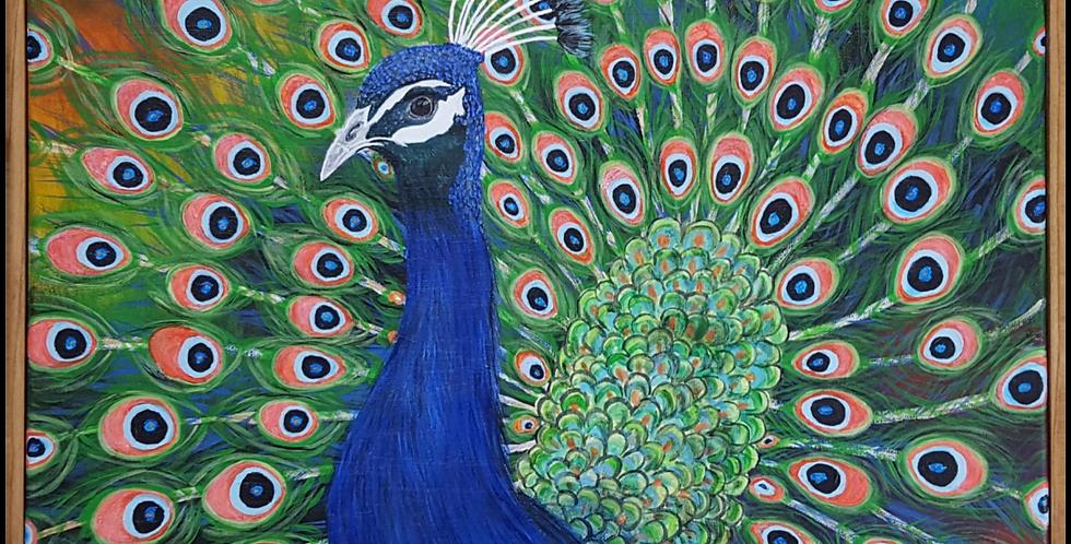 """Peacock Framed  16 """" x  20"""""""