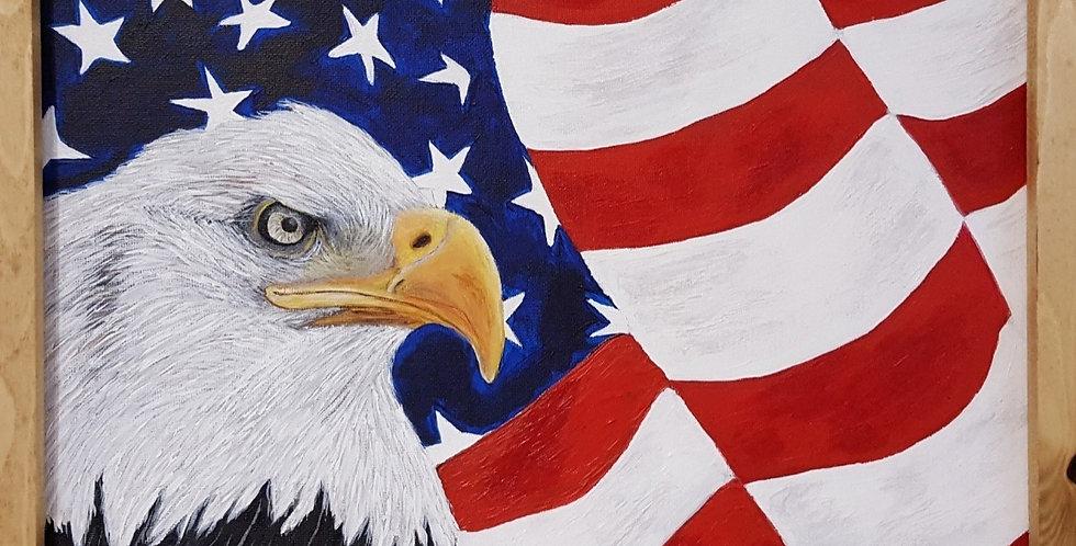 """USA FLAG FRAMED 11"""" x 14"""""""