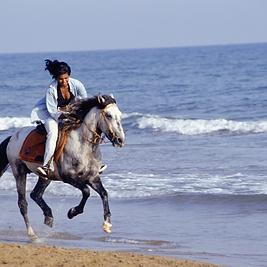 woman horseback riding on beach.png
