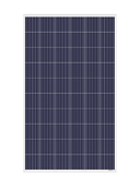 RISEN 60 CELLS.png