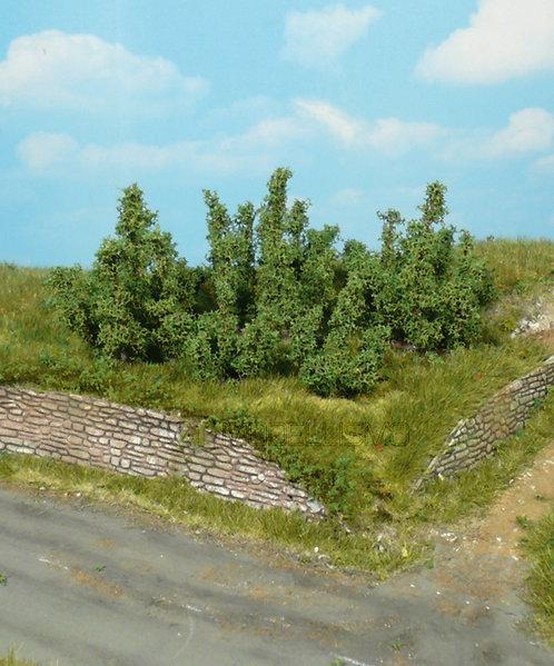 Heki 1725 - 10 cespugli