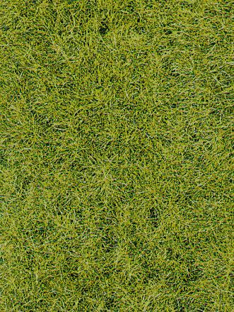 Heki 1856 - Manto decorativo di erba selvatica, foresta