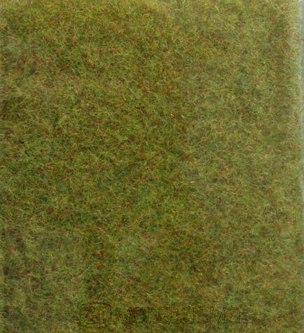 Heki 1592 - Erba selvatica, autunno