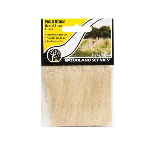 Woodland scenics FG171 - Field grass, natural straw