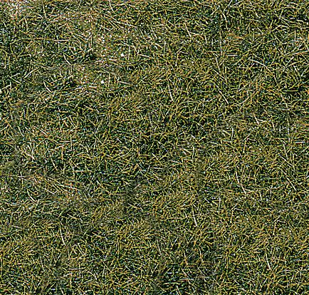 Heki 1872 - Tappeto d'erba selvaggia, 2 pezzi