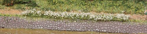 Heki 1815 - 10 strisce di prato lillà e bianche