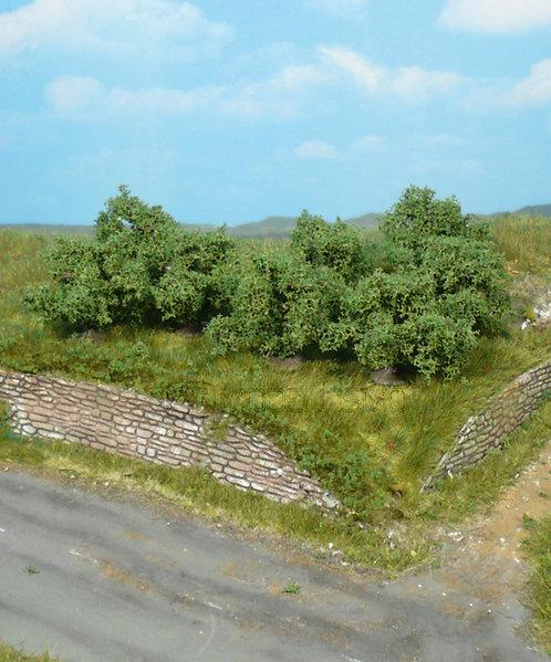 Heki 1735 - 8 cespugli