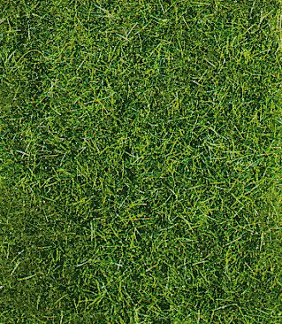 Heki 1857 - Manto decorativo di erba selvatica, verde scuro