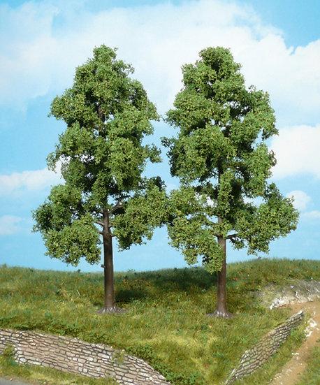 Heki 1712 - Set di 2 alberi di faggio