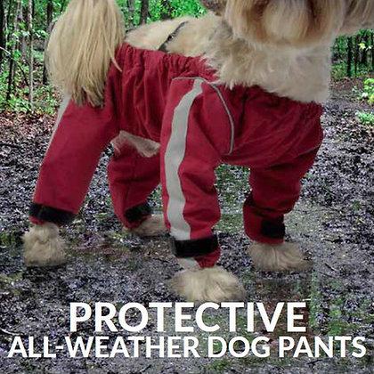 Pantalon pour chien bodyguard