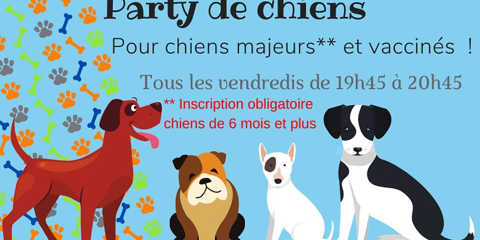 Party de chiens  le VENDREDI 24 septembre 19h45