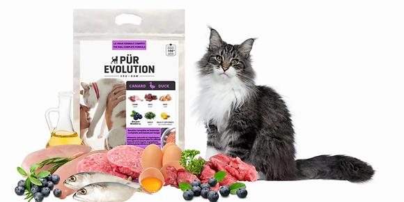 Nourriture cru pour chat  Pür Evolution canard