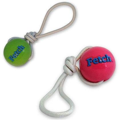 Tugs fetch ball