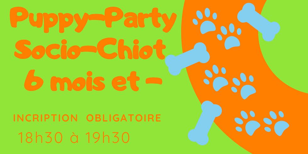Puppy-Party/ Socio-chiot 6 mois et moins le  8 juillet
