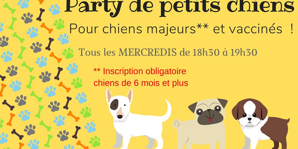 Party de petits chiens 30 septembre
