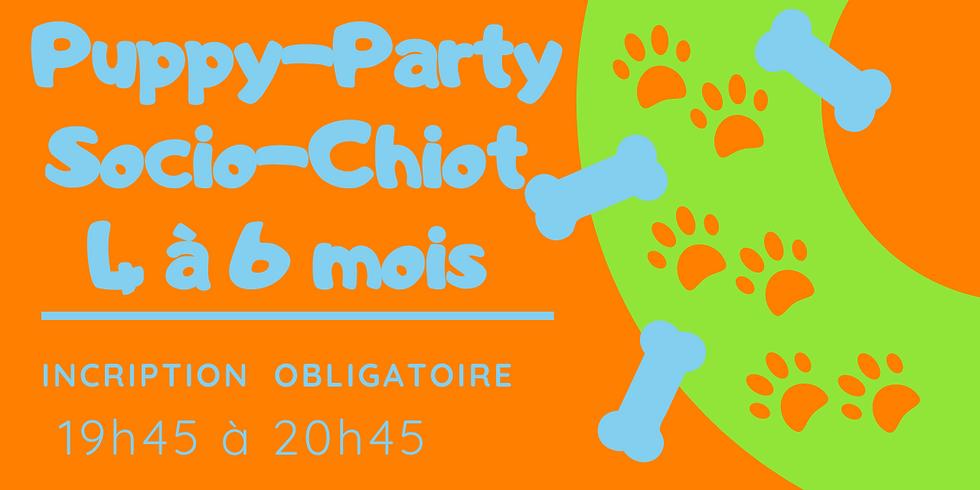 Puppy-Party/ Socio-chiot 4 mois et plus 1 octobre