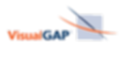 VisualGap_logo_simplified.png