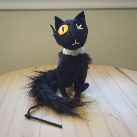 Black Cat Cat 1.jpg
