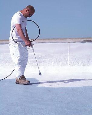 guy spraying top coat2.jpg