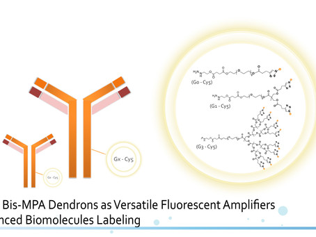 Bis-MPA Dendrons as Versatile Fluorescent Amplifiers for Enhanced Biomolecule Labeling