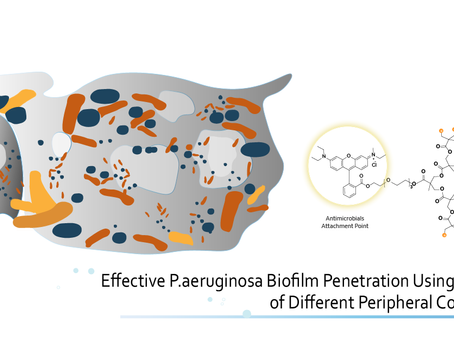 Bis-MPA Dendron with Ammonium Functionalities Offers Effective Penetration in P.aeruginosa Biofilms