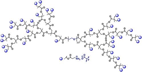 Hyperbranched bis-MPA PEG 10k, Ammonium Functional, Generation 4
