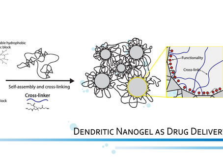 The Potential of Dendritic Nanogels (DNGs) as An Enhanced Polymeric Drug Delivery System