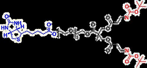 bis-MPA NHBoc Dendron, Biotin Core, Generation 1