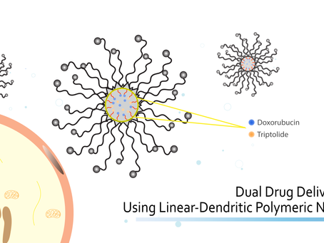 Dual Drug Delivery System Using Linear-dendritic Polymeric Nano-carriers