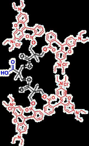 bis-MPA Rhodamine Dendron, COOH Core, Generation 2