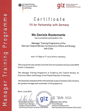 Certificado_Fit4Partnership_Germany.PNG