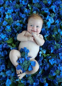anne-geddes-fotografie,babyfotografie