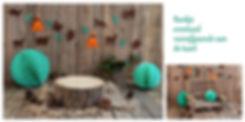 bostherma,bos thema, bos thema verjaardag,verjaardag met thema, thema fotoshoot,handgemaakt houten bankje,houten bankje gemaakt door jan,