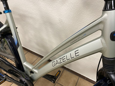 fiets 003.2.jpeg