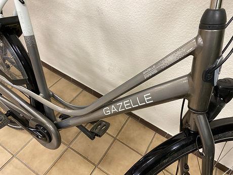 fiets f2.jpeg