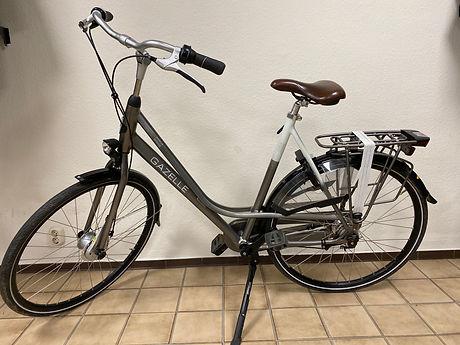 fiets f 4.jpeg