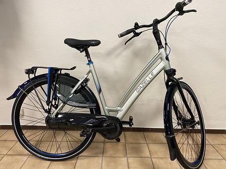 fiets 003.1.jpeg