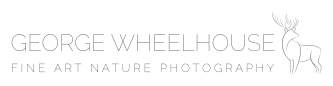 GW_Logo_Wide(1).png