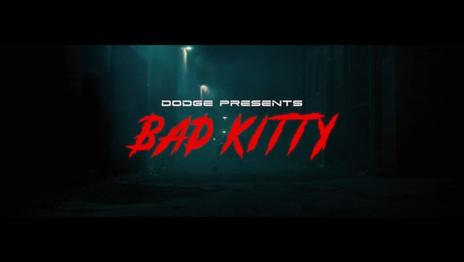 Dodge | Black Cat